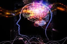 cerveau-langue